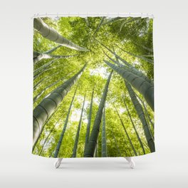 Bamboo forest in Japan Shower Curtain