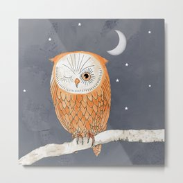 Winking Owl by the Light of the Moon Metal Print
