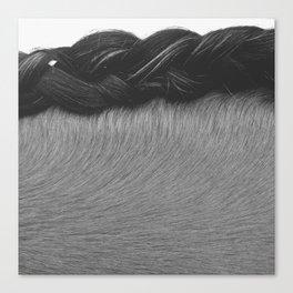 Braided Mane Canvas Print