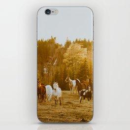 Sunset glow iPhone Skin