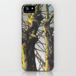 Sunset light iPhone Case