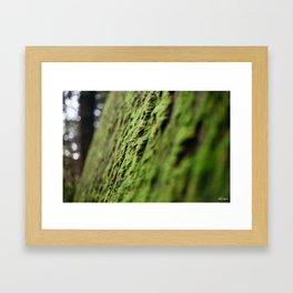 The Green Room Framed Art Print