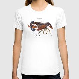 Calling Salvador T-shirt