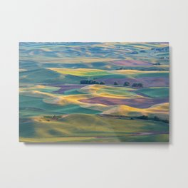 The Palouse at Sunset in Summer Metal Print