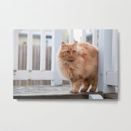Garfield Metal Print