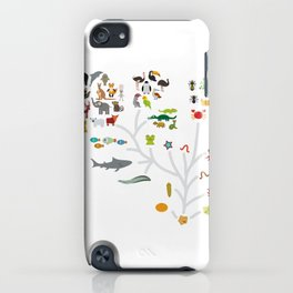Evolution scale from unicellular organism to mammals. Evolution in biology, scheme evolution of anim iPhone Case