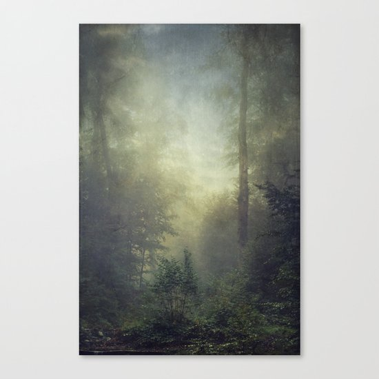 secret domaim Canvas Print