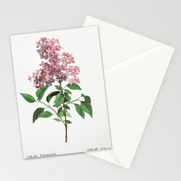 Chinese lilac (Lilac rothomagensis) from Traite des Arbres et Arbustes que lon cultive en France en Stationery Cards