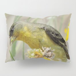 Feasting Finch Pillow Sham