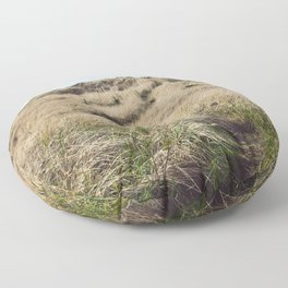 Oregon Dune Grass Adventure - Nature Photography Floor Pillow