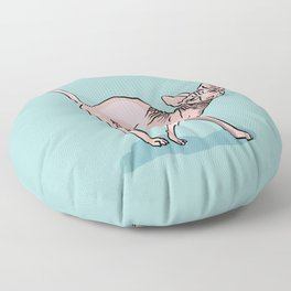 Playful Sphynx Cat Arching Its Back - Wrinkly Nude Kitty - Robins Egg Blue Background Floor Pillow