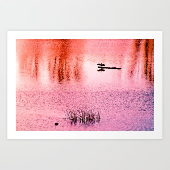 Ripples, reed, reflections,red Art Print