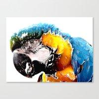 parrot Canvas Prints featuring Parrot by Regan's World