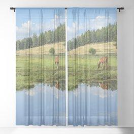 Colorado Country - 5404 Sheer Curtain