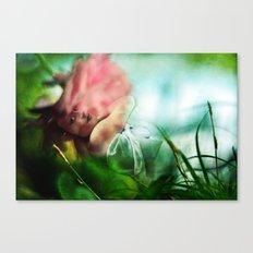 Soul's Colors Canvas Print