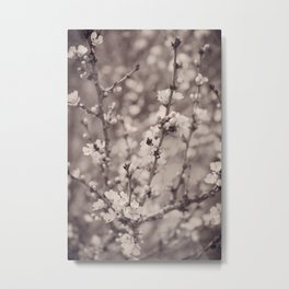 Spring Floral Branches in Sepia Metal Print