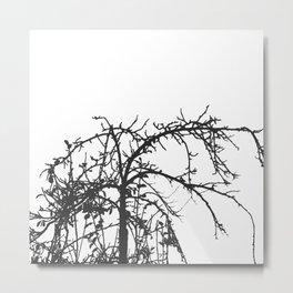Creepy tree silhouette, black on white Metal Print
