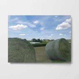 Farm fun Metal Print