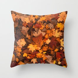 Autumn Fall Leaves Throw Pillow