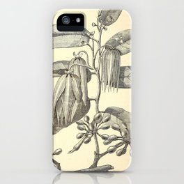 Cananga odorata iPhone Case