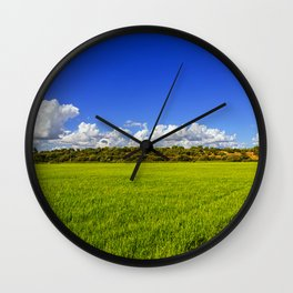 Rice Field II Wall Clock
