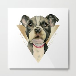 Puppy Eyes 4 Metal Print