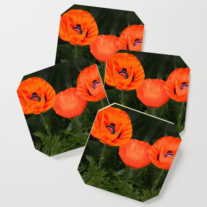 Oriental poppies Coaster