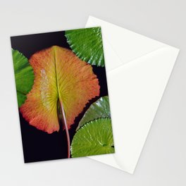 Nymphaea Tropic Sunset Lily Pad Leaves Stationery Cards