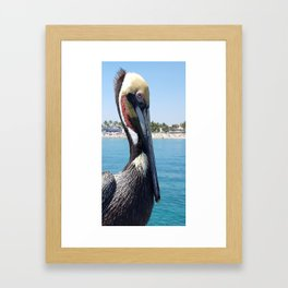 Fort Lauderdale Pier Pelican Framed Art Print