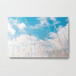 Summer Grass Metal Print