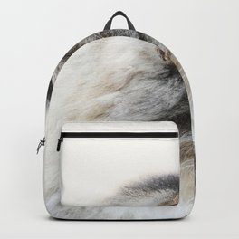 Silver Cat Backpack