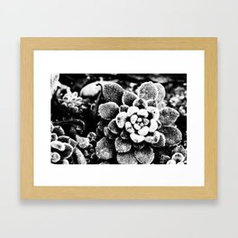 Furry Framed Art Print