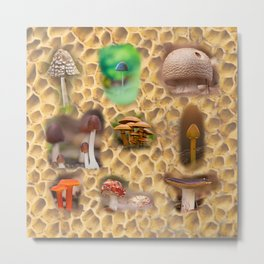 Mushrooms of different colors and shapes Metal Print
