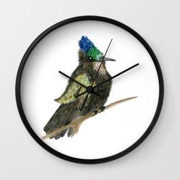 Antillean Crested Hummingbird Wall Clock