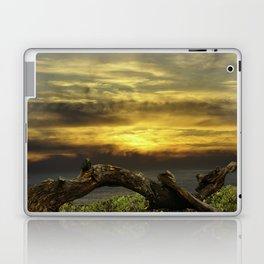 Oregon Coast - Golden Hour Laptop & iPad Skin