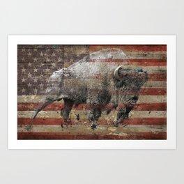 American Bison 2 Art Print