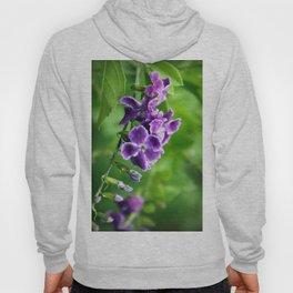 Transformation, Purple Duranta Photography Hoody