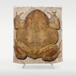 Overhead Anatomy Of a Bufo Bufo Toad Shower Curtain