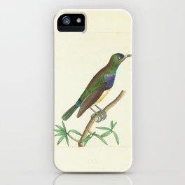 Leona Creeper6 iPhone Case