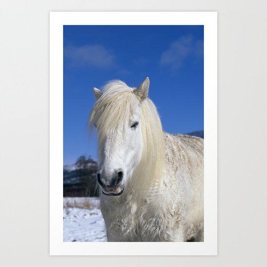 WHITE HORSE BLUE SKY Art Print