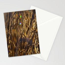 # 277 Stationery Cards
