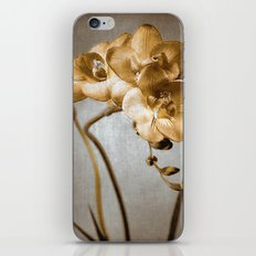 GOLDEN ORCHID iPhone & iPod Skin