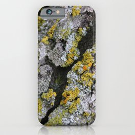 Lichen #1 iPhone Case