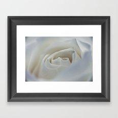 White Rose 9522 Framed Art Print