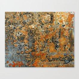 Rust 300 Canvas Print