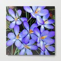 Blue Wildflowers by costa