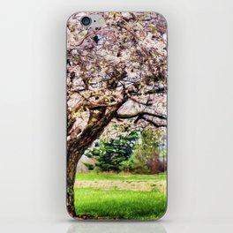 Spring has Sprung iPhone Skin