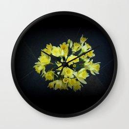 Daffodils Reaching Out Wall Clock