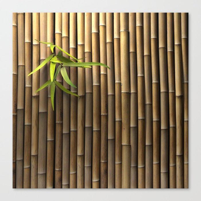 Bamboo Wall Leinwanddruck