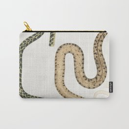 1-3 Bengal Snake (Coluber Bengalensis) 4-7 Lozenge Snake (Coluber rectangulus) from Illustrations of Carry-All Pouch